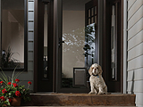 Larson Elegant Selection Pet Storm Door